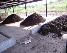 Компостну насичення ґрунту фото